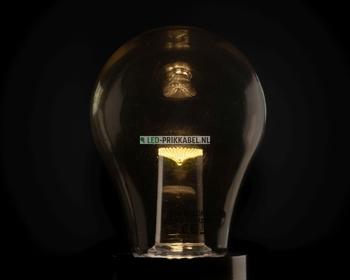 Led lamp warm wit transparante kap dimbaar