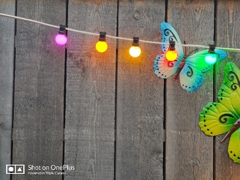 Prikkabels met verlijmde ledlamp gekleurd 50-50